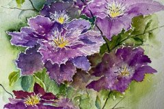 'Clematis'(framed) by Avril Hardman