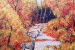'Autumn Stag' by Debra Warne