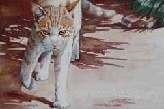 'Spicy Ginger' by June Lesley Fox