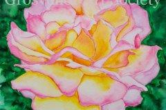 "'Peace' by Jakki Antrobus - watercolour (8"" x 8"") £95 - contact: antrojak@yahoo.co.uk"